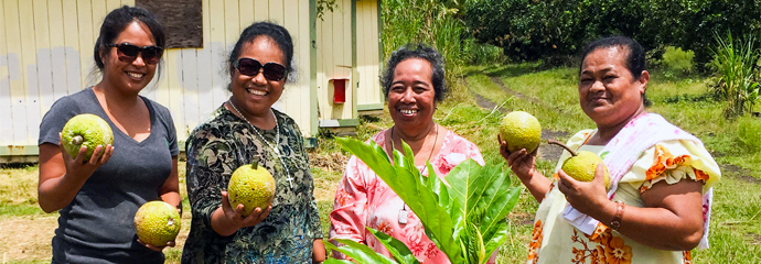One 'Ohana: Food & Housing For All